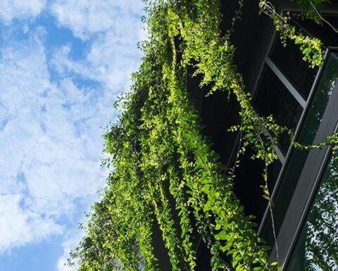 suedeuropa-sustainable-building2